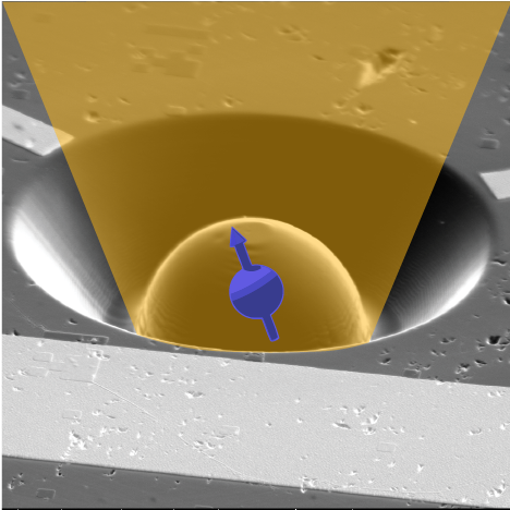 Orbital and Spin Dynamics of Single Neutrally-Charged Nitrogen-Vacancy Centers in Diamond